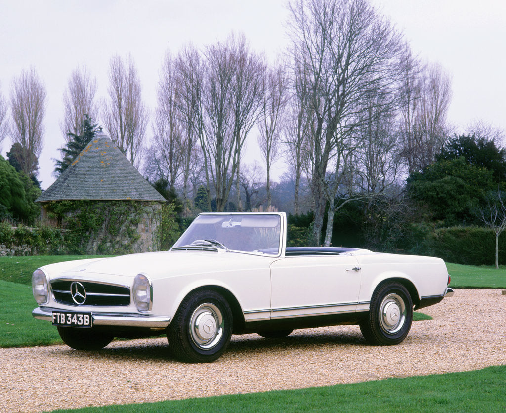 Detail of 1964 Mercedes Benz 230SL by Unknown