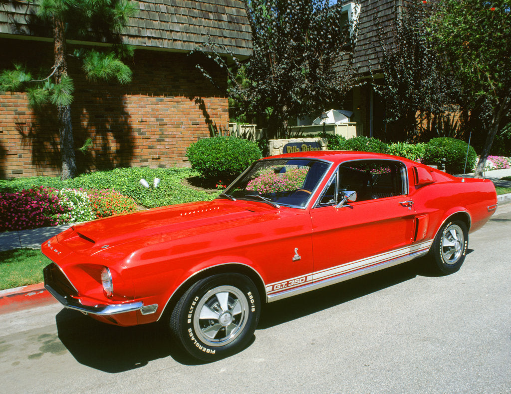 1969 ford mustang shelby gt 350
