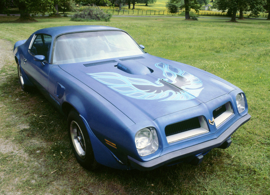 Detail of 1974 Pontiac Trans AM 455 Super Duty by Unknown