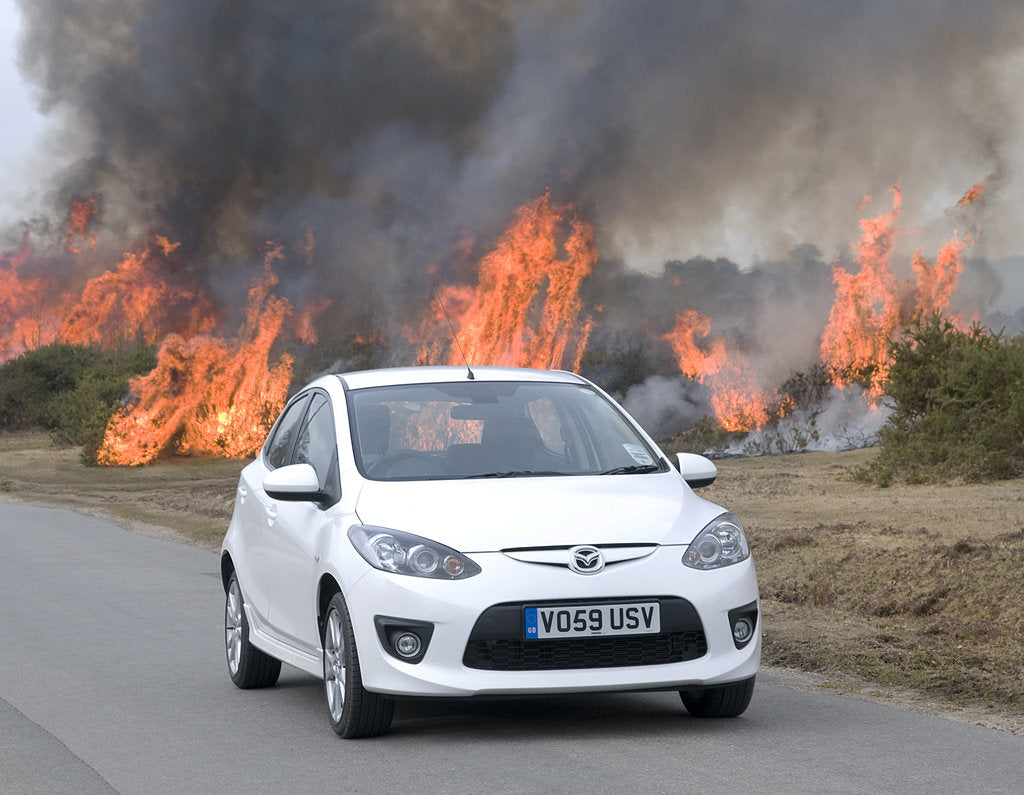 Detail of 2010 Mazda 2 Sport, controlled burning in New Forest by Unknown