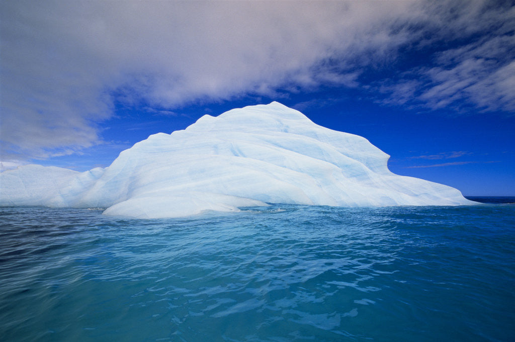 Detail of Iceberg by Corbis