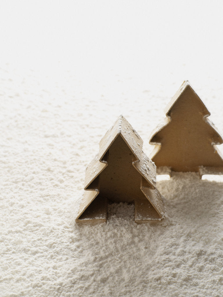 Detail of Christmas decoration by Corbis
