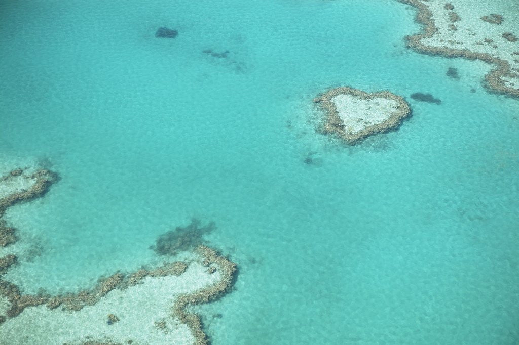 Detail of Aerial view of the Great Barrier Reef, Queensland, Australia by Corbis