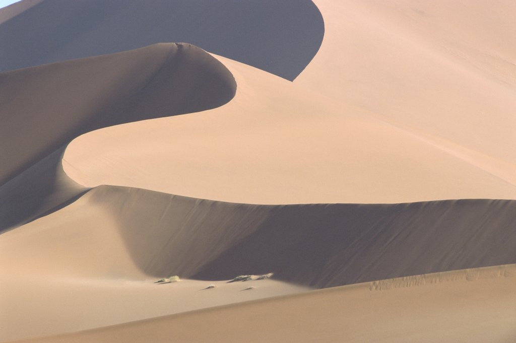 Detail of View of sand dunes in a desert by Corbis