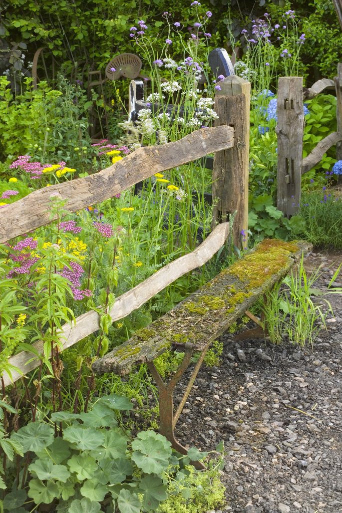 Detail of Flower Garden with Old Wood Fence by Corbis