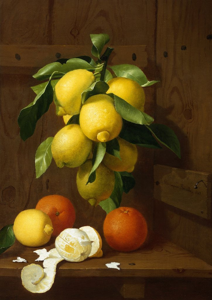 Detail of A Still Life of Lemons and Oranges by Antonio Mensaque
