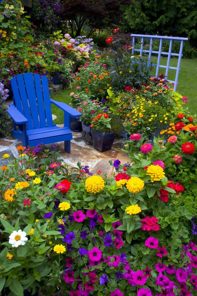 Detail of Backyard Flower Garden With Chair by Corbis