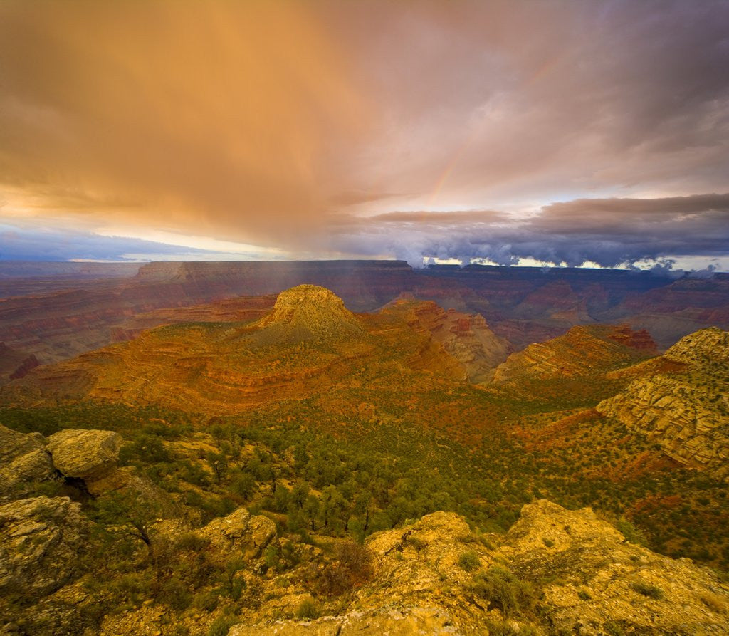 Detail of Bright Clouds Over Grand Canyon by Corbis