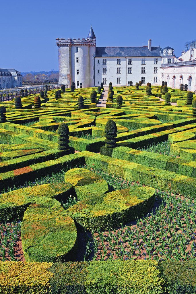 Detail of Chateau de Villandry and Garden by Corbis