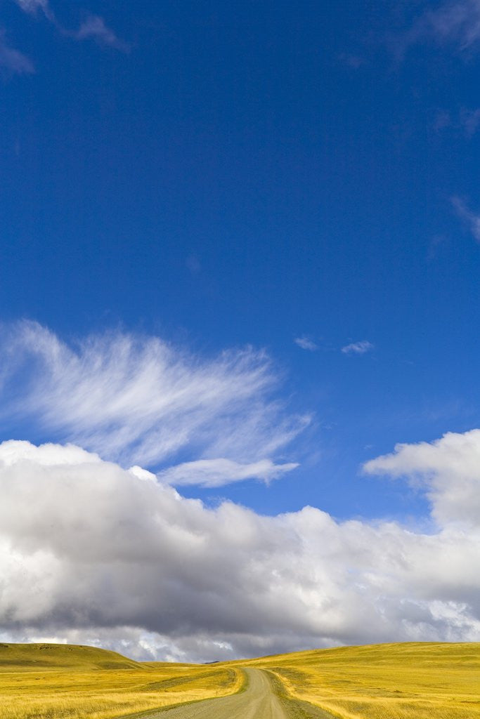 Detail of Clouds above Rural Road by Corbis