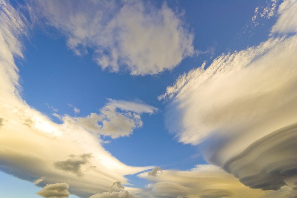 Detail of Cumulus and Lenticular Clouds at Sunrise by Corbis