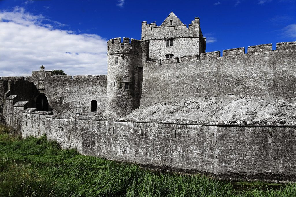 Detail of Cahir Castle by Corbis