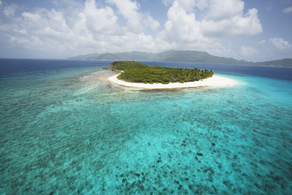 Detail of Green Cay in British Virgin Islands by Corbis