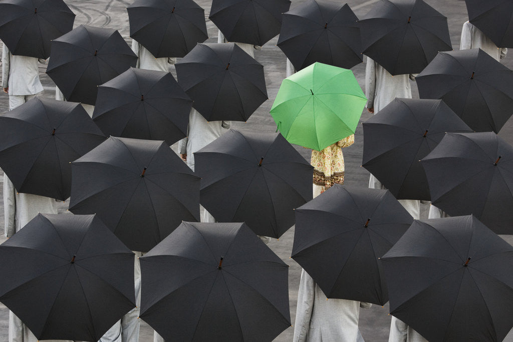 Detail of Green umbrella among group of black by Corbis