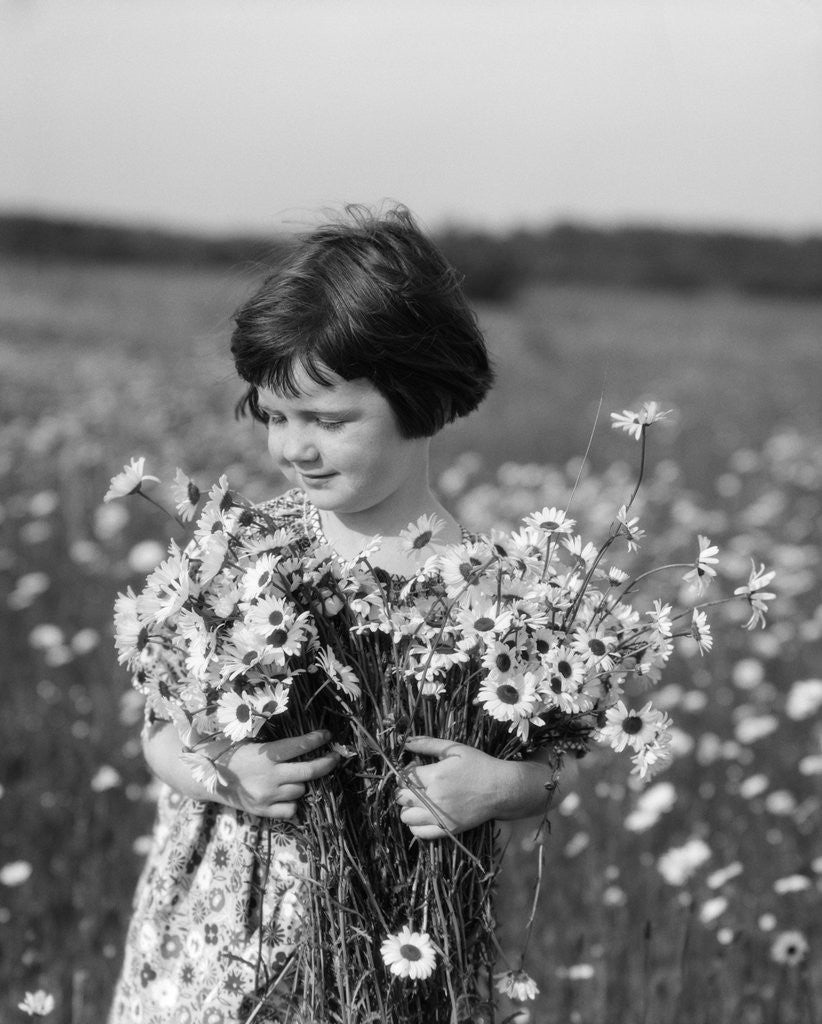 Detail of 1920s Girl In Meadow Holding Bunch Of Daisies by Corbis