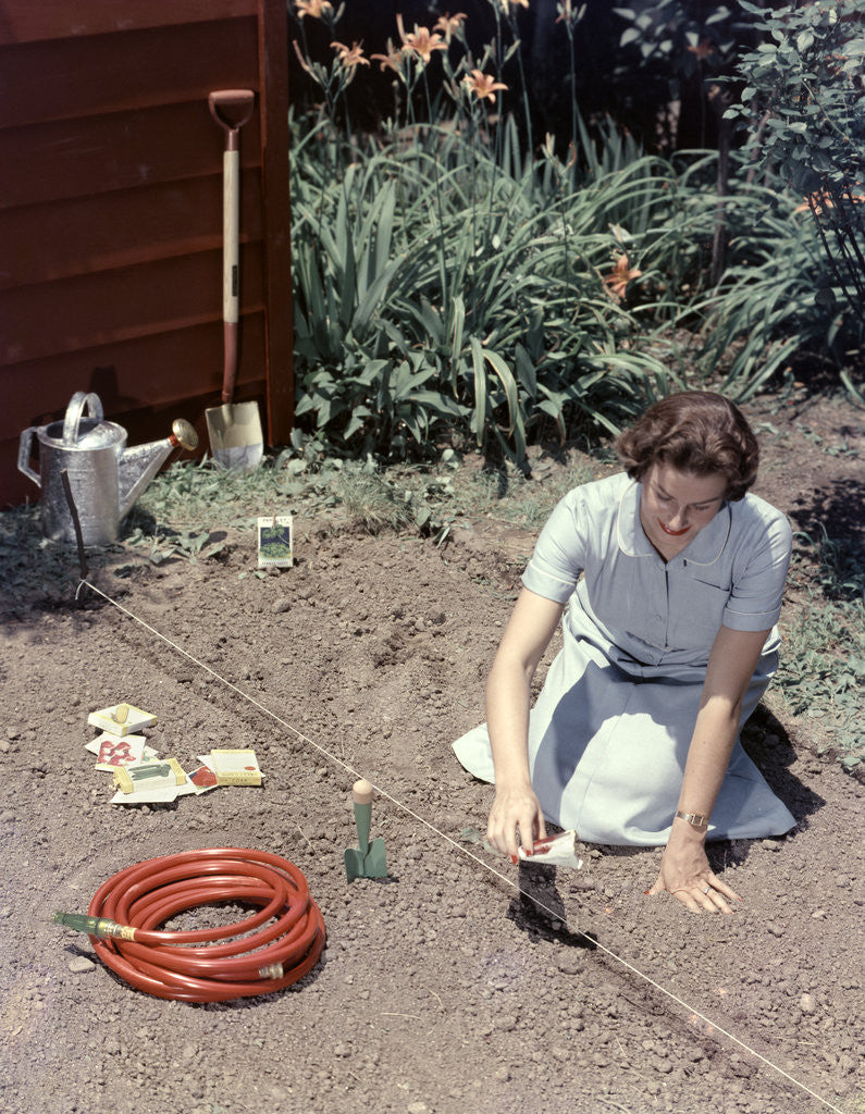 Detail of 1950s Woman Kneeling In Garden Planting Seeds In Soil by Corbis