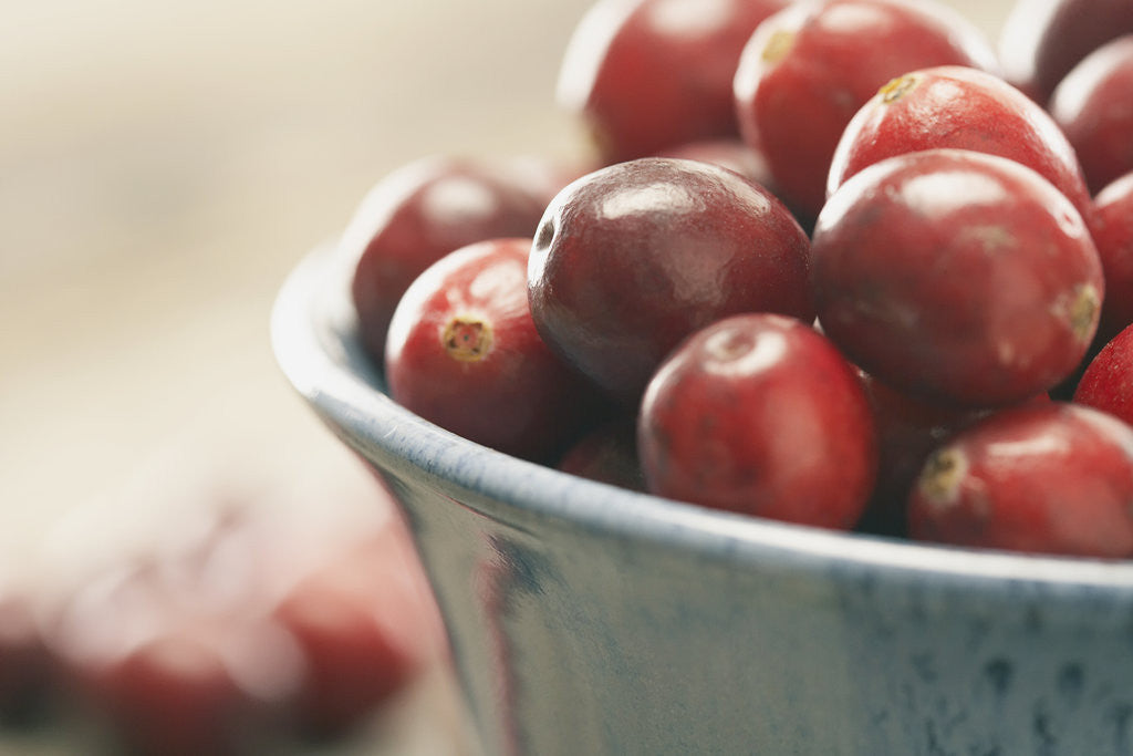 Detail of Cranberries in a bowl by Corbis