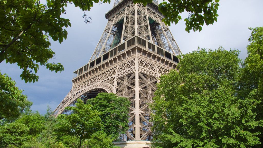Detail of Eiffel Tower and Trees by Corbis