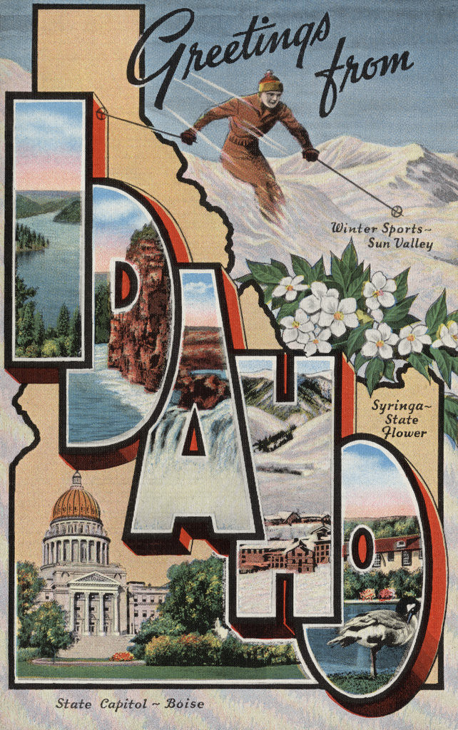 Detail of Greetings from Idaho Postcard by Corbis