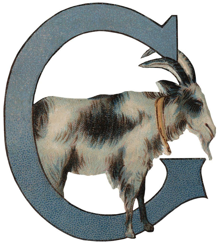 Detail of G Is For Goat Illustration by Corbis