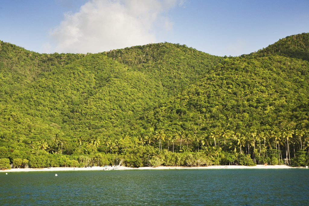 Detail of Cinnamon Bay by Corbis