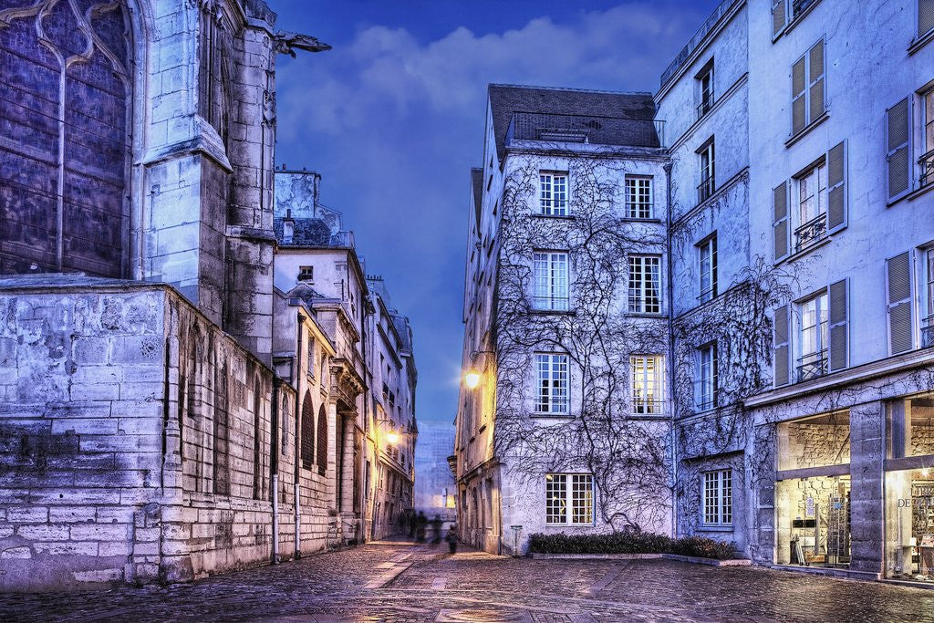 Detail of Cobblestone Street in The Marais District of Paris by Corbis