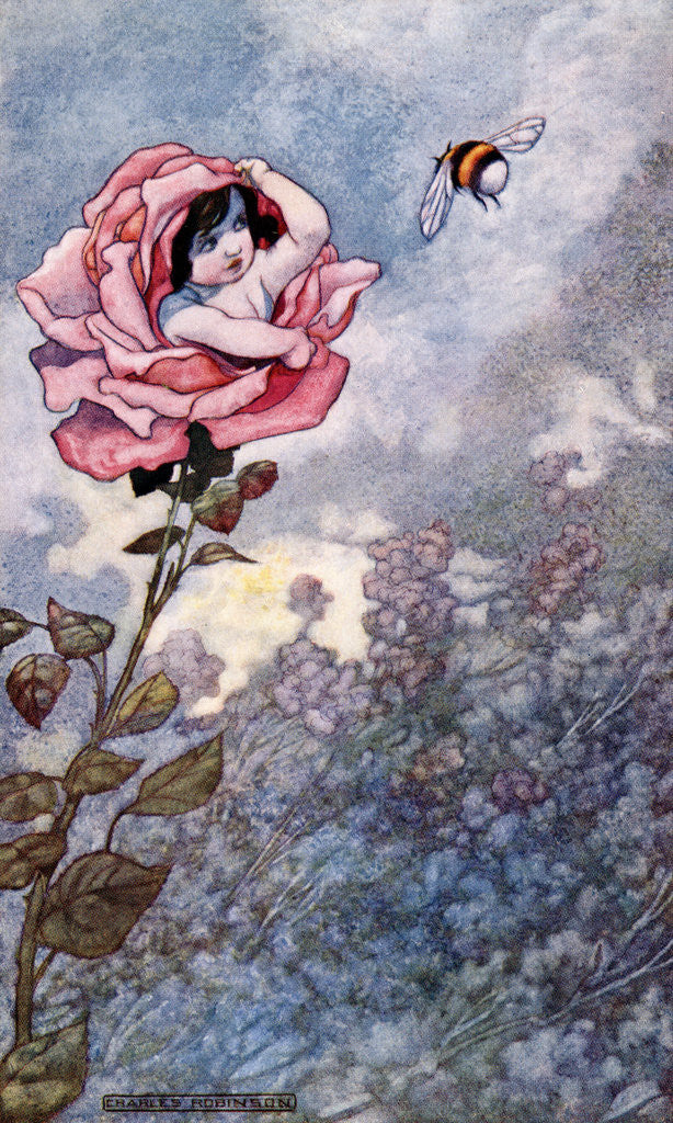 Detail of Illustration of Child Hiding in Rose by Charles Robinson