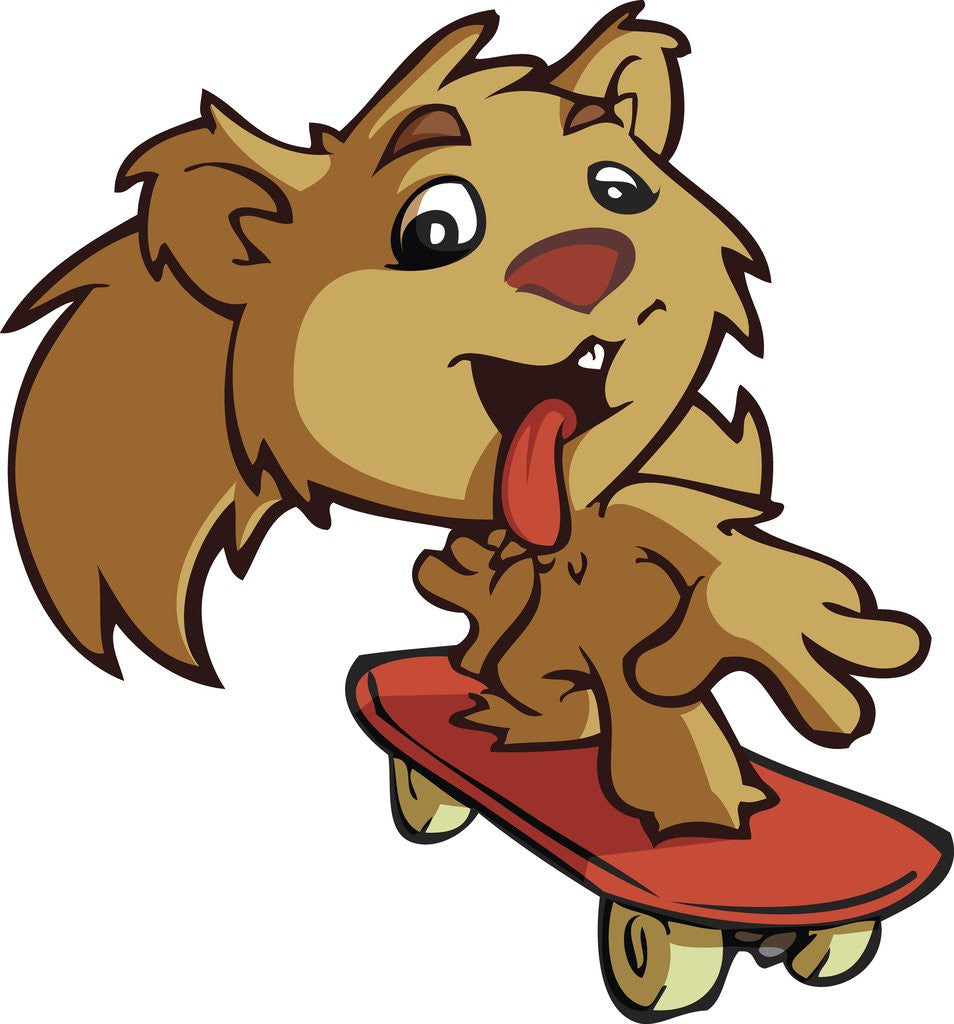 Detail of Squirrel on Skateboard by Corbis
