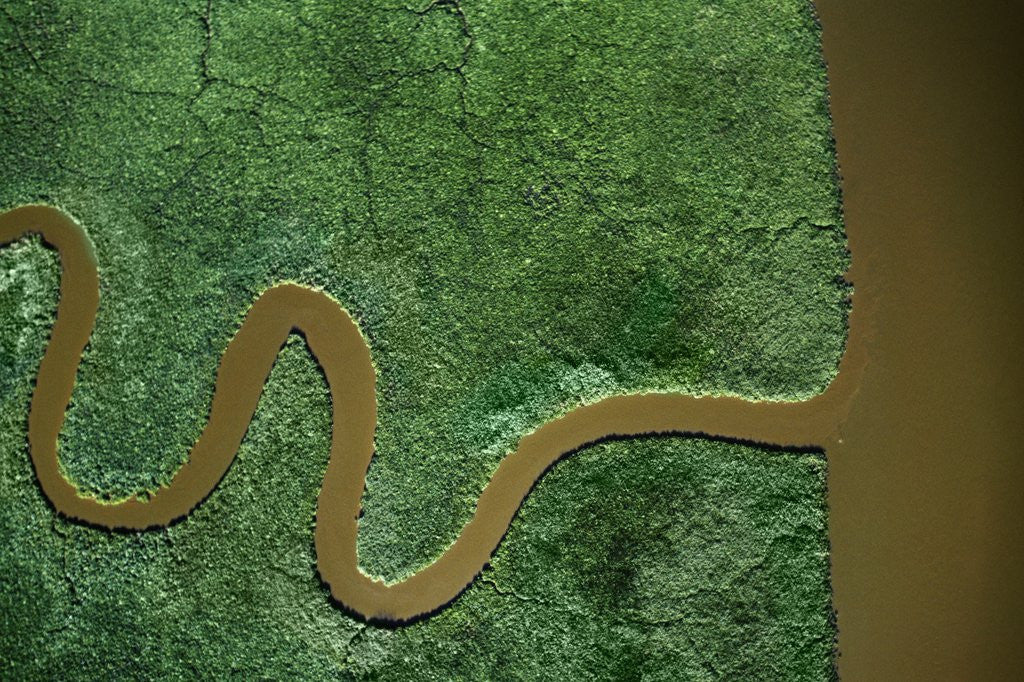 Detail of Aerial view of the Chickahominy River by Corbis