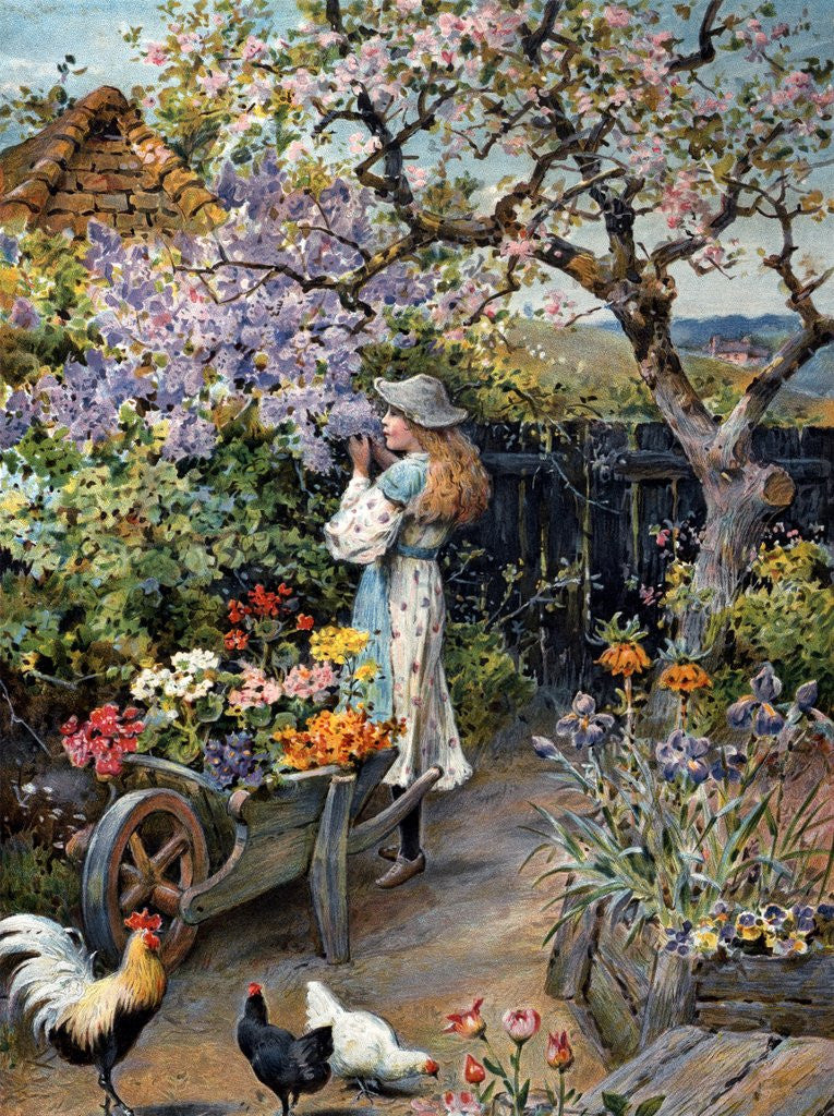 Detail Of An English Cottage Garden By William Stephen Coleman