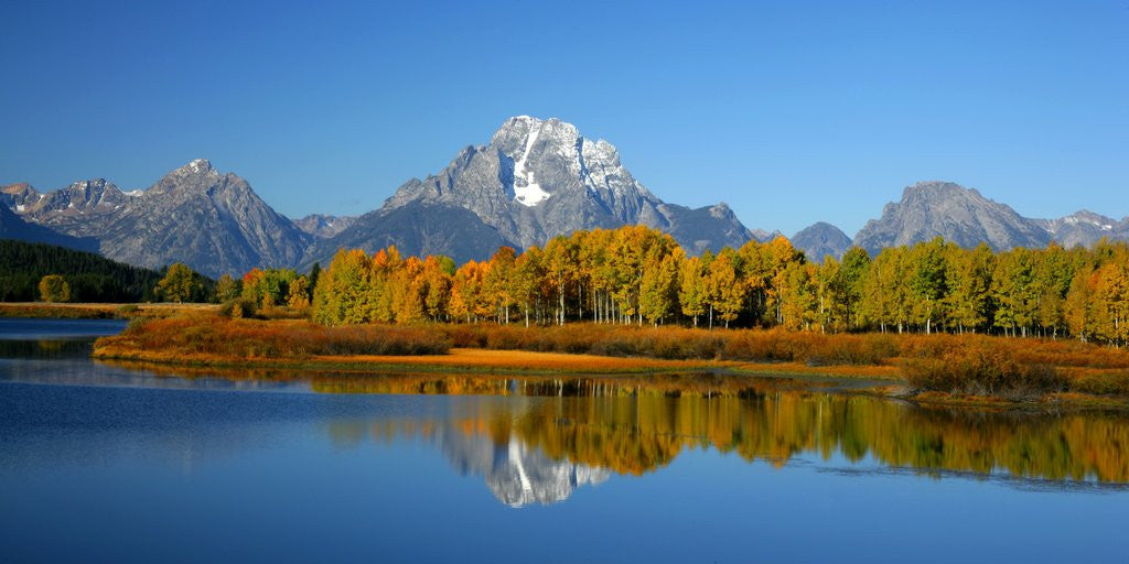 Detail of Oxbow Bend in Grand Teton National Park by Corbis