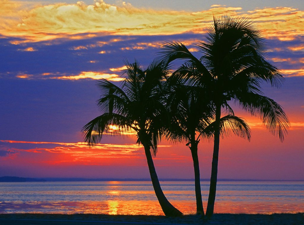 Detail of Colorful sunset over Sombrero Beach in the Florida Keys by Corbis