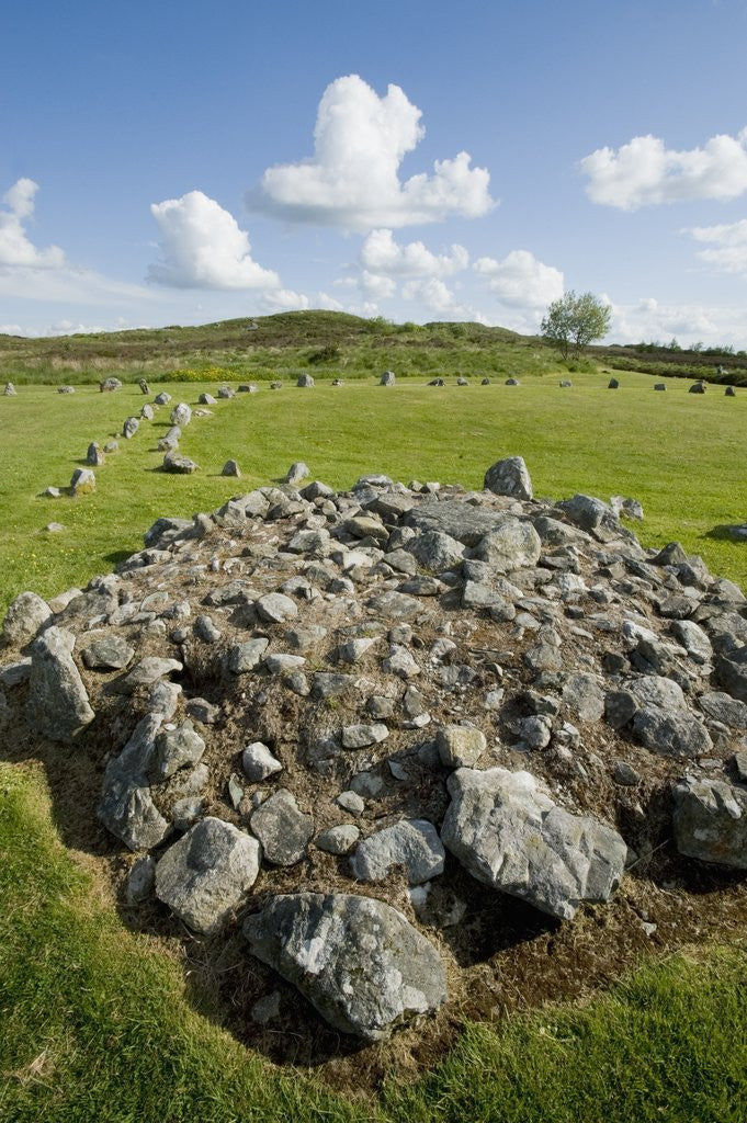 Detail of Beaghmore Stone Circles by Corbis