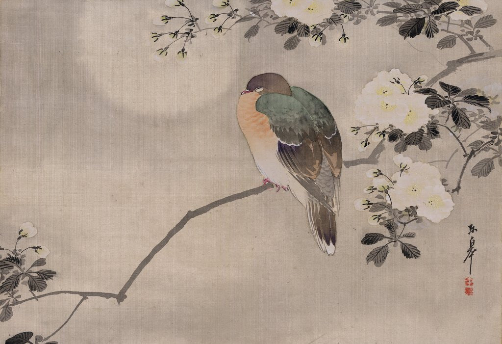 Detail of Japanese watercolor of bird perched on a branch of a blossoming tree by Corbis
