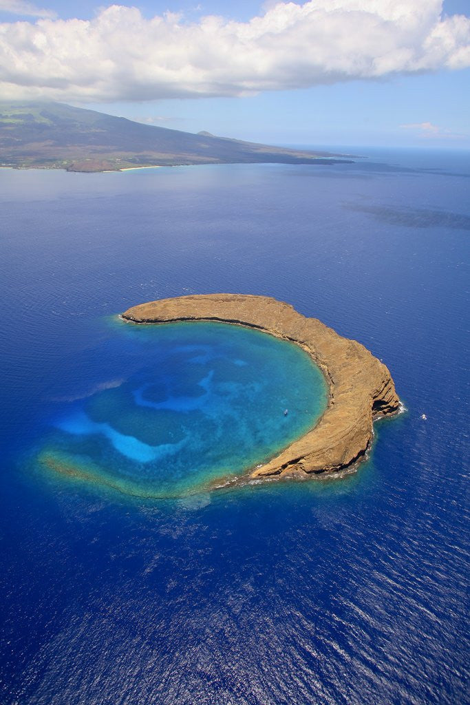 Detail of Molokini Crater off the coast of Maui by Corbis
