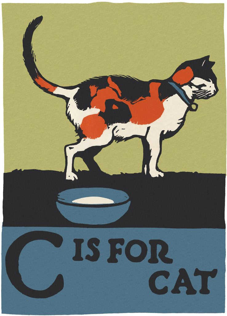 Detail of C is for cat by Corbis