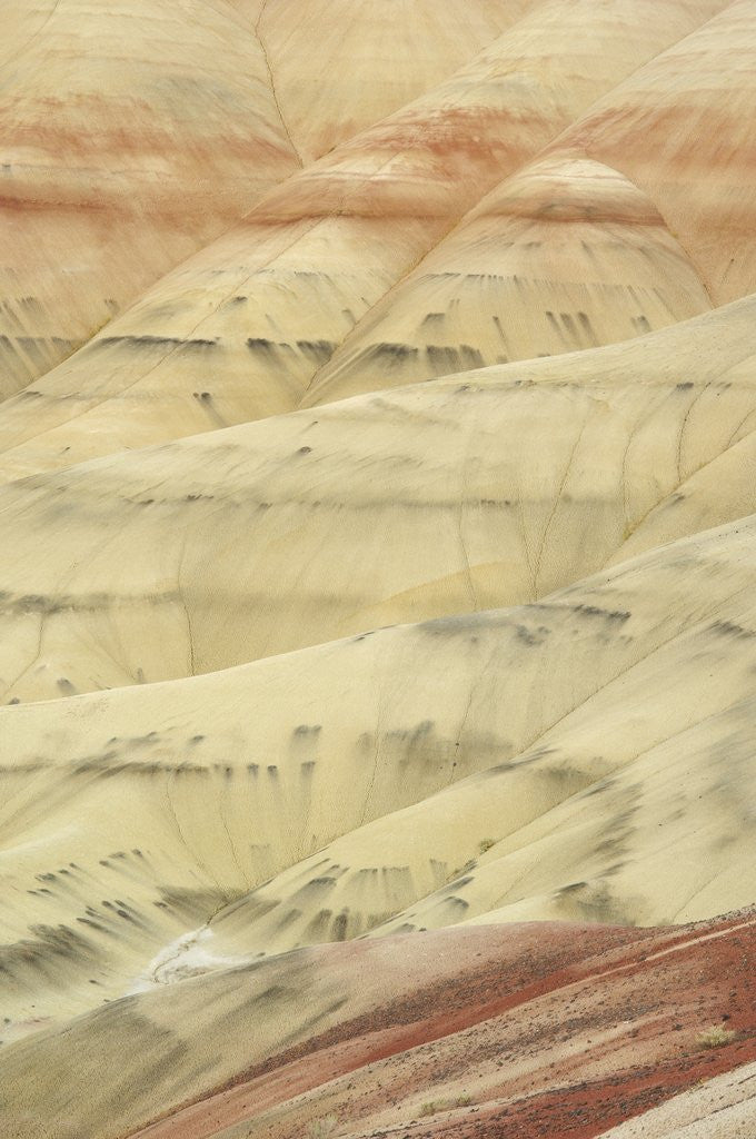 Detail of The Painted Hills at the John Day Fossil Beds National Monument, Oregon, USA by Corbis