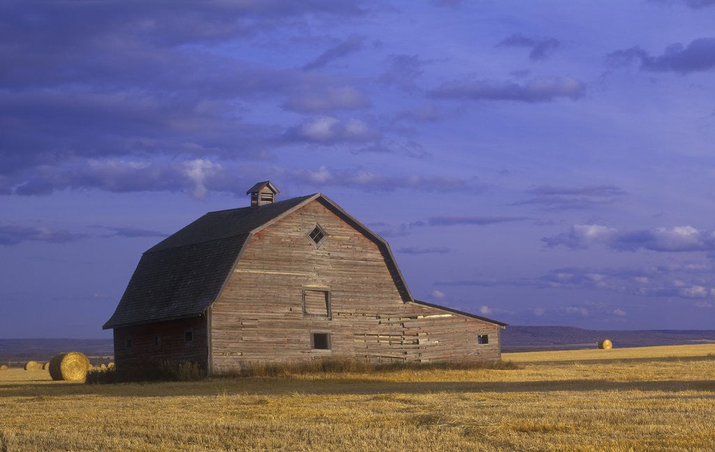 Detail of Old Barn in the Peace River Country, Near Dawson Creek, British Columbia, Canada. by Corbis