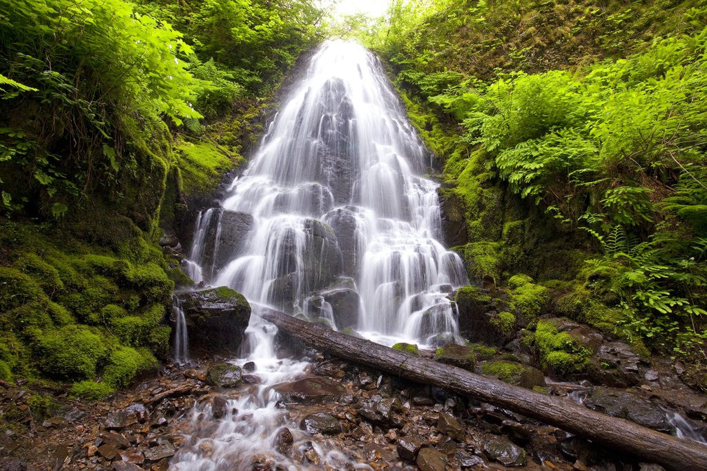 Detail of Fairy Falls, Columbia River Gorge National Scenic Area, Oregon by Corbis