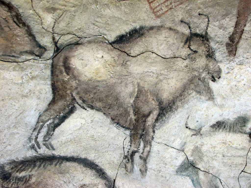 Detail of Replica of cave painting of bison from Altamira cave by Corbis