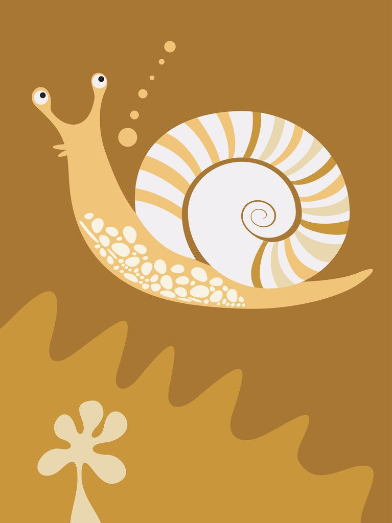 Detail of A snail by Corbis