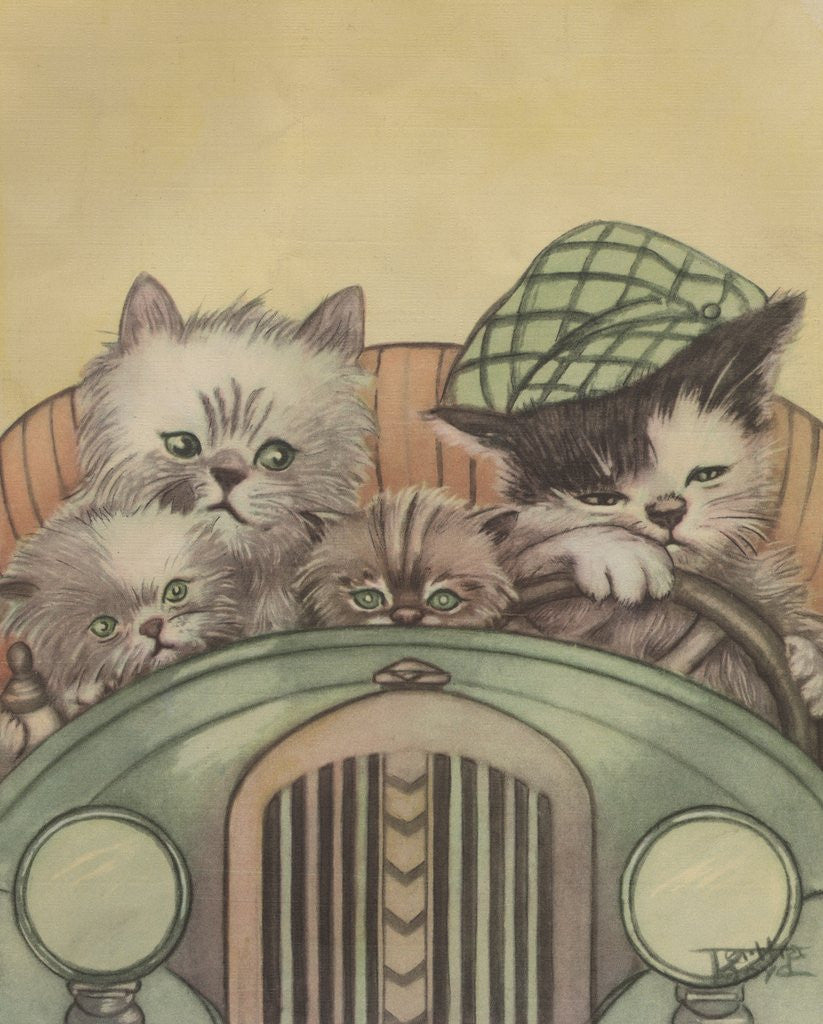 Detail of Cat family driving in car by Corbis