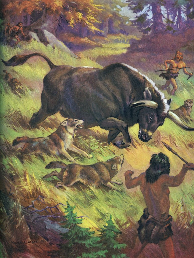Pictures of cavemen hunting