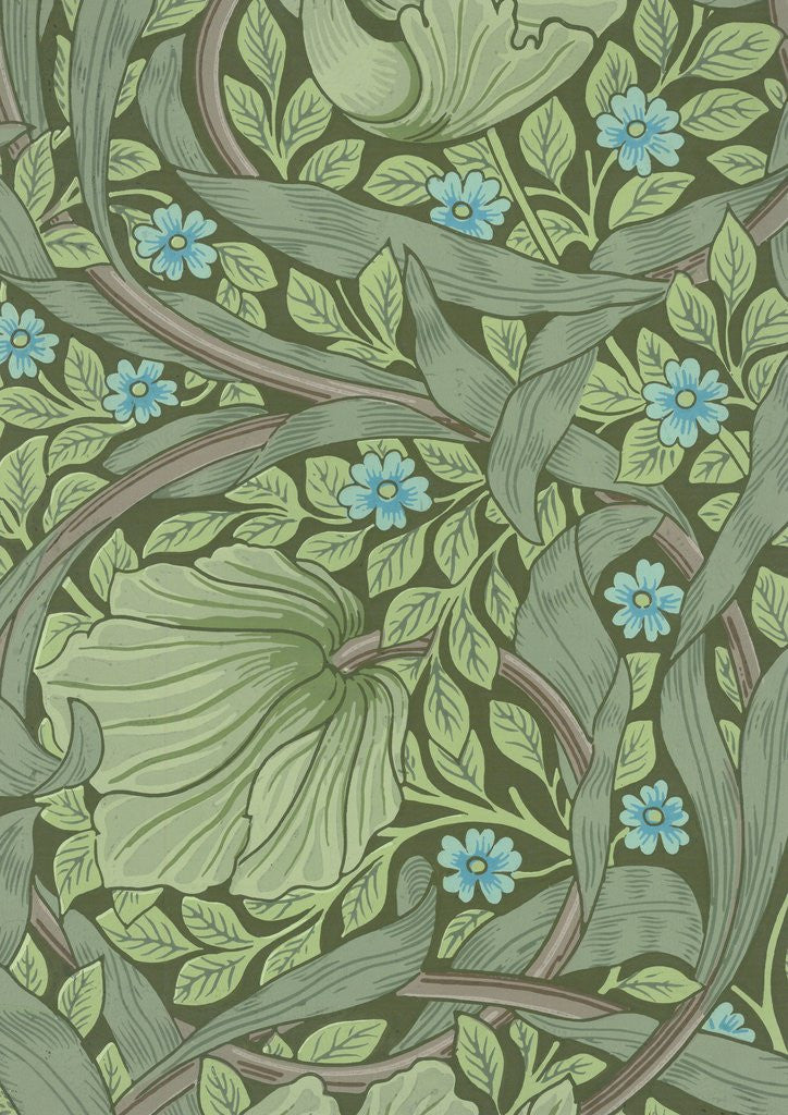 Detail Of William Morris Wallpaper Sample With Forget Me Nots By Corbis