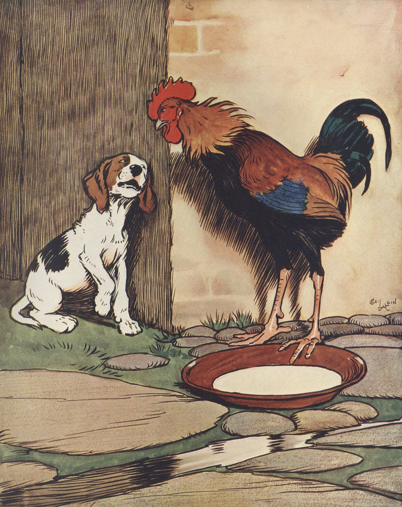 Detail of Dog and rooster conversing by Corbis