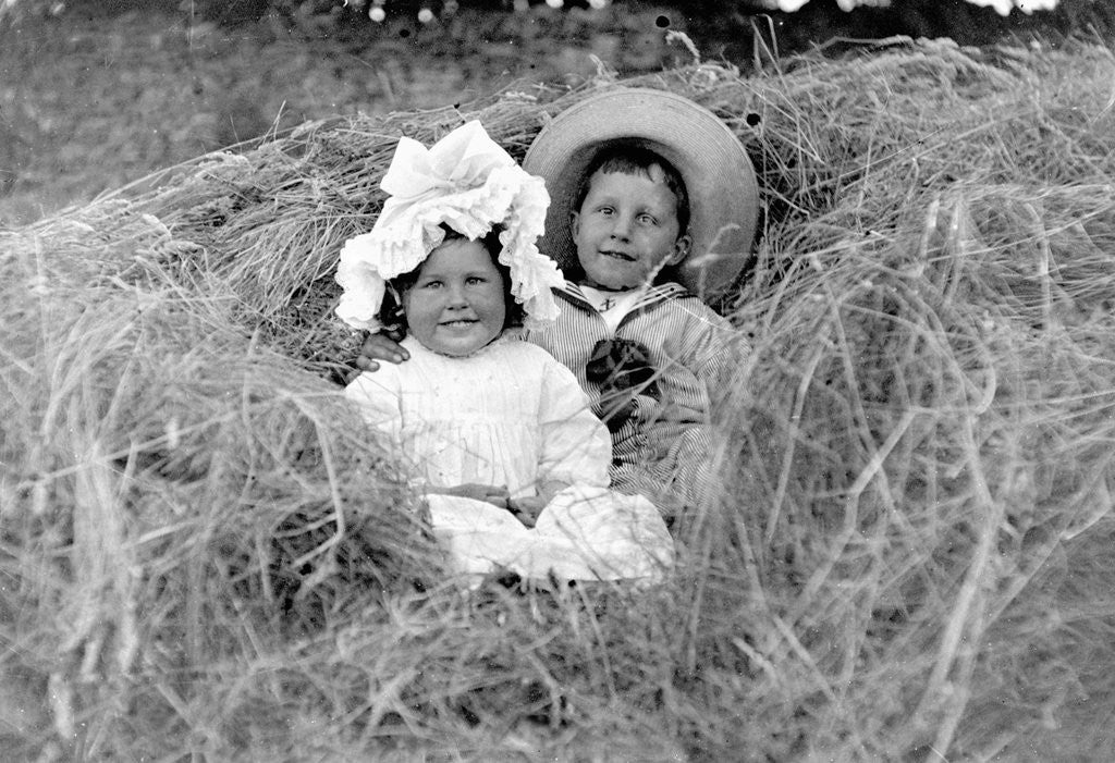 Detail of A young brother and sister nestled in the hay, ca. 1900. by Corbis