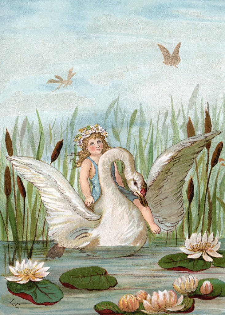 Detail of Fairy riding a white swan in a marsh by Corbis