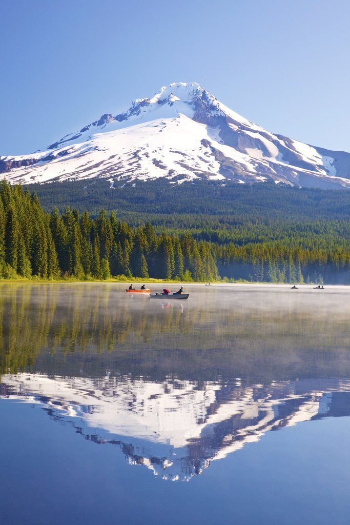 Detail of Reflection in Trillium Lake, Mt. Hood, Oregon Cascades. Pacific Northwest by Corbis
