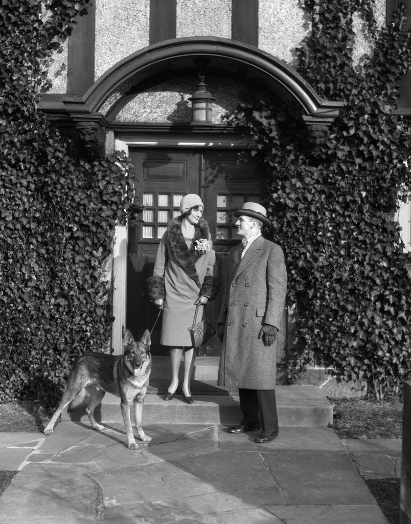 Detail of 1920s couple wearing coat hat gloves on steps ivy covered building with german shepherd dog on a leash by Corbis