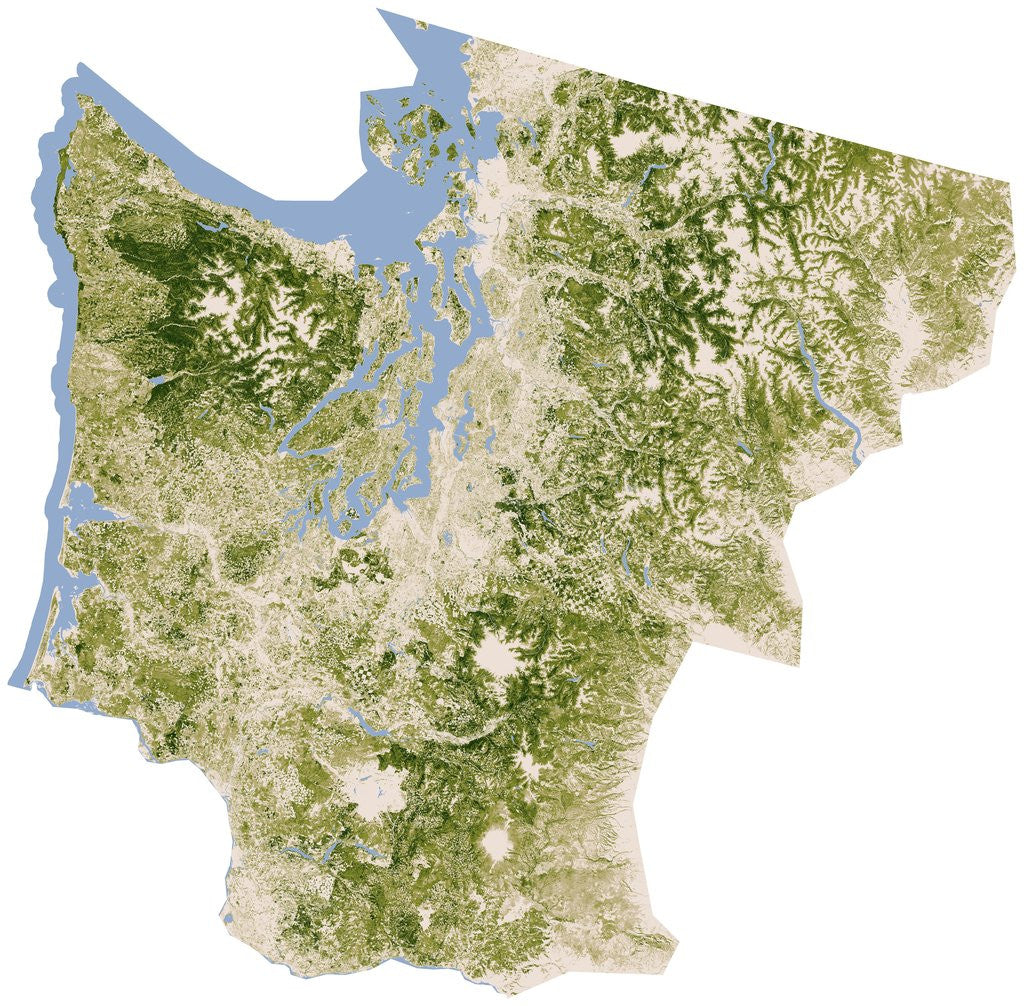 Satellite biomass map of western Washington State